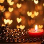 寂しさを埋めるもの。それは愛すること。