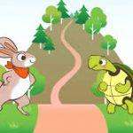 現代版ウサギとカメ 亀は途中で居眠りしてしまう