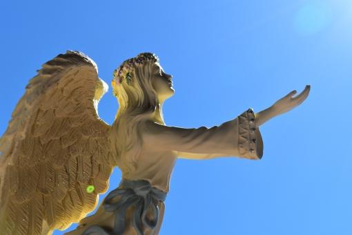 天使の羽を広げる